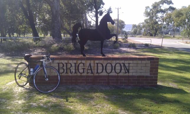 Brigadoon - a different horse