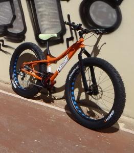 finished fat bike